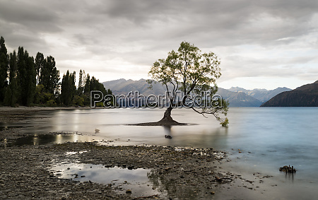 new zealand south island otago wanaka