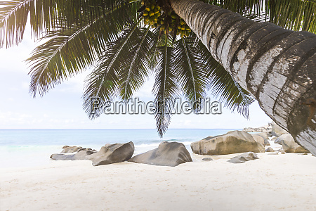 seychelles la digue carana beach