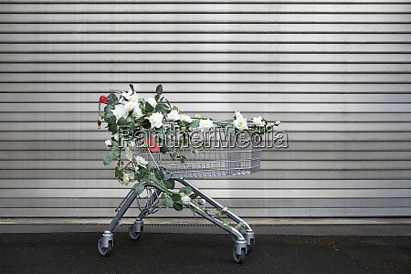 shopping cart decorated with white artificial