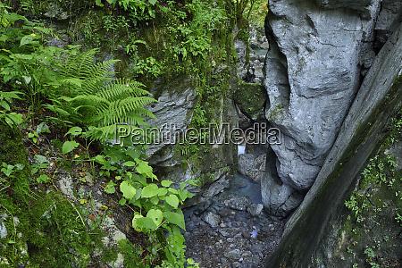 slovenia tolmin triglav national park tolmin