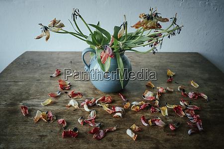 dead flower petals falling from stems