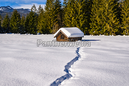 winter in the alpine foothills