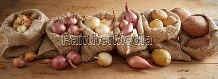 row of sacks with onion and