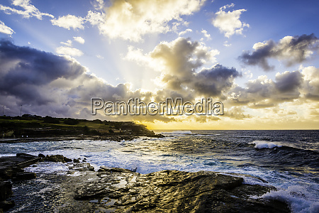 autumn sunrise over a sydney beach