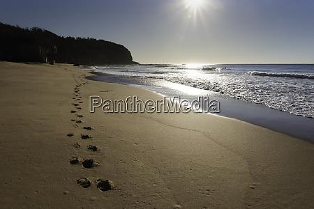 beach footprints towards the sun