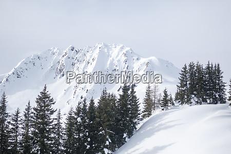 rettenstein mountain in the austrian alps