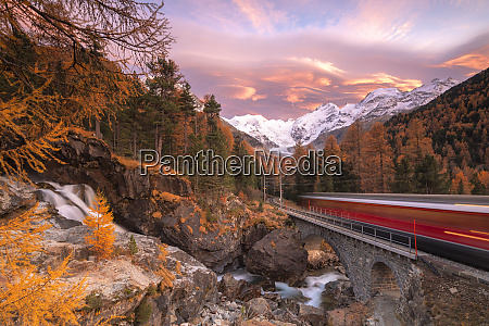 bernina express train in transit along