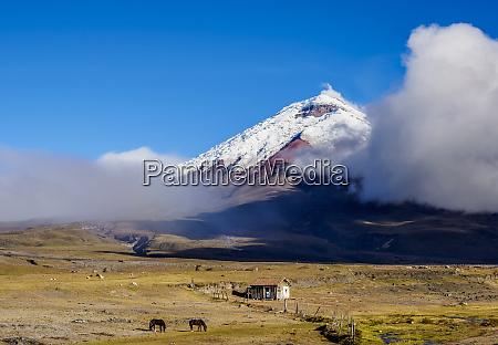 view towards cotopaxi volcano cotopaxi national