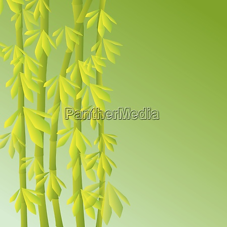an abstract bamboo background with a