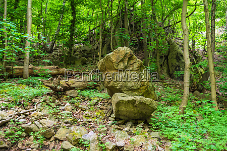 landscape with rocks in the harz
