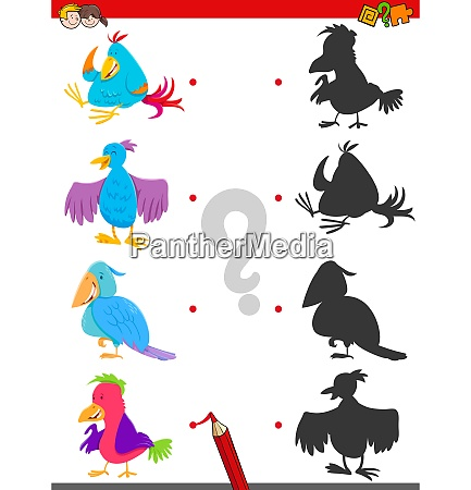 match shadows activity with bird characters