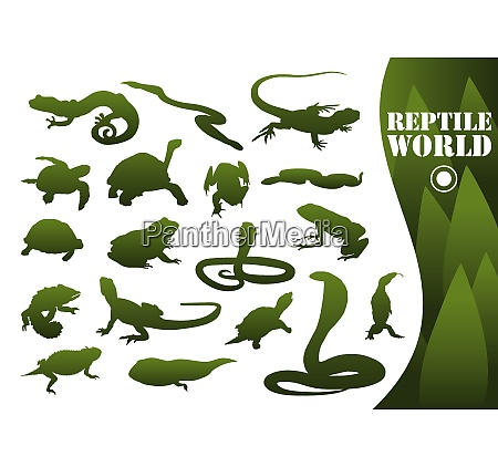 reptile silhouettes isolated