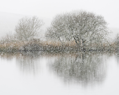 snowfall broad pool gower south wales