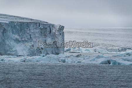 massive icefield champ island franz josef