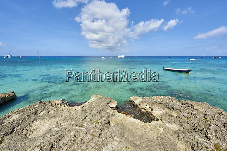 rocky coastline in cayman islands with