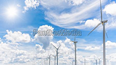 beautiful many windmills under the sun