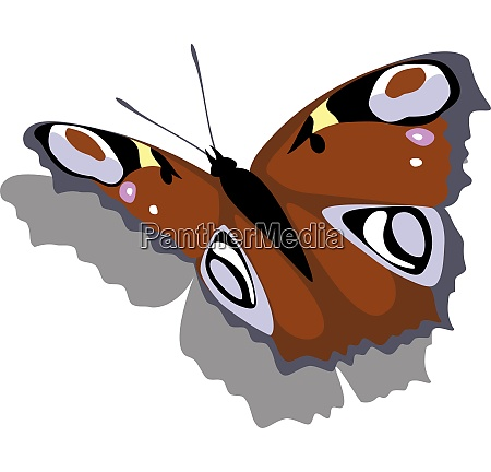 vector butterfly on paper 12