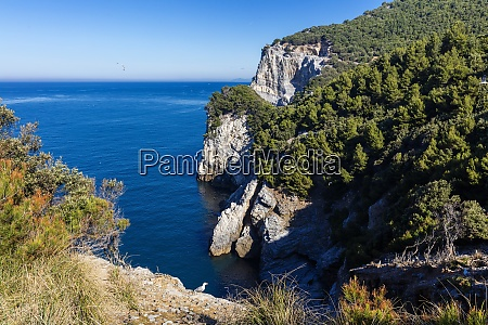 island of palmaria view of the