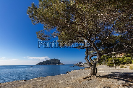 pozzale island of palmaria liguria italy