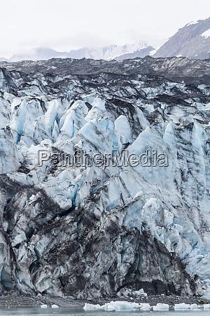 lamplugh glacier in glacier bay national