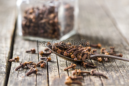 carnation dried clove spice