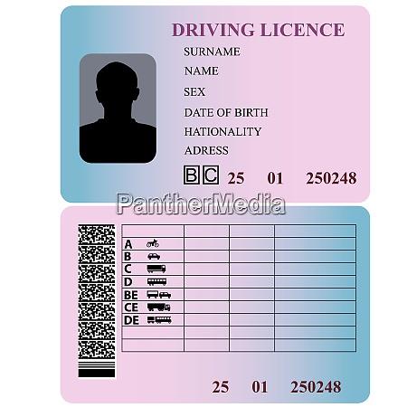 driving license vector illustration