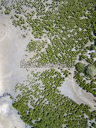 indonesia aerial view of lombok paths