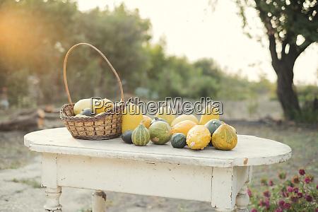 autumn pumpkins on a wooden table