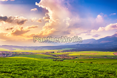 picturesque green fields and meadow landscape