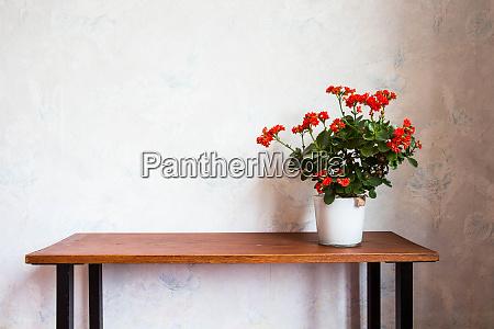 flower pot with orange flowers on