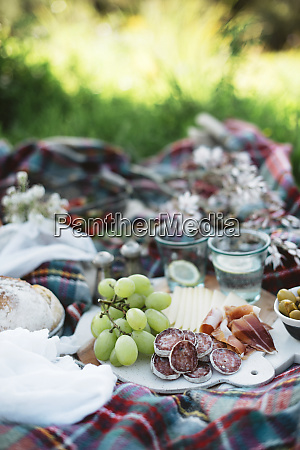 delicious food for picnic lying on