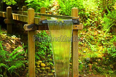 germany lower saxony harz fresh spring