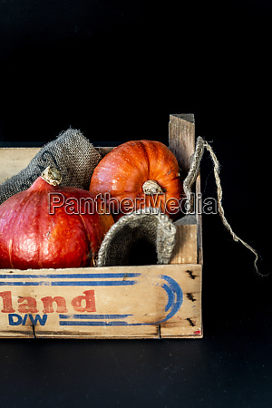 two hokkaido pumpkins in a vegetable