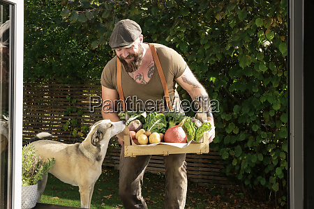 mature man carrying crate with vegetables