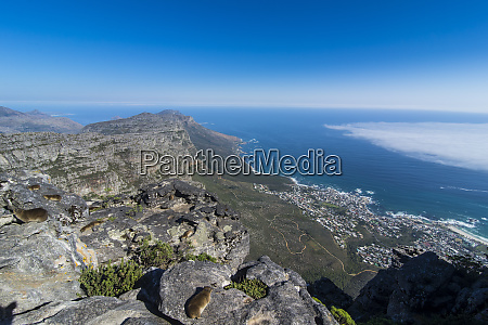 south africa view over camps bay