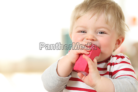 cheerful baby biting a toy an