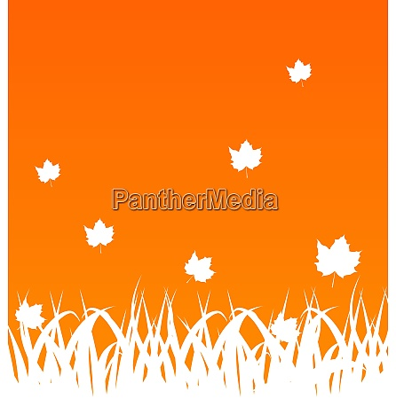 illustration autumn background with flying maples