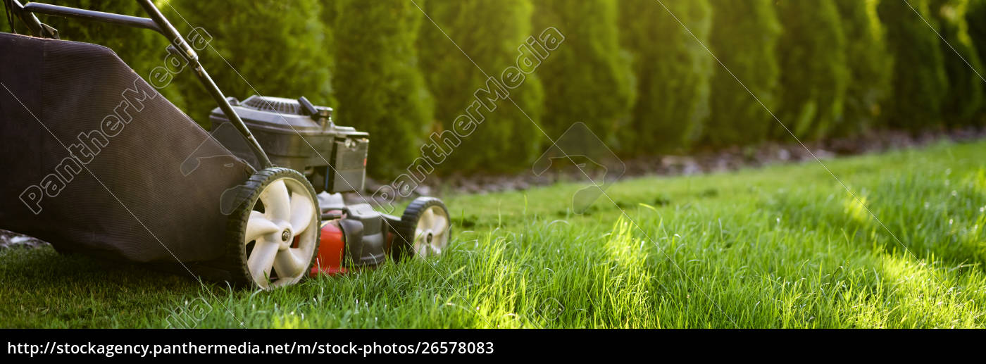 Lawn Mower Cutting Green Grass Royalty Free Image 26578083 Panthermedia Stock Agency