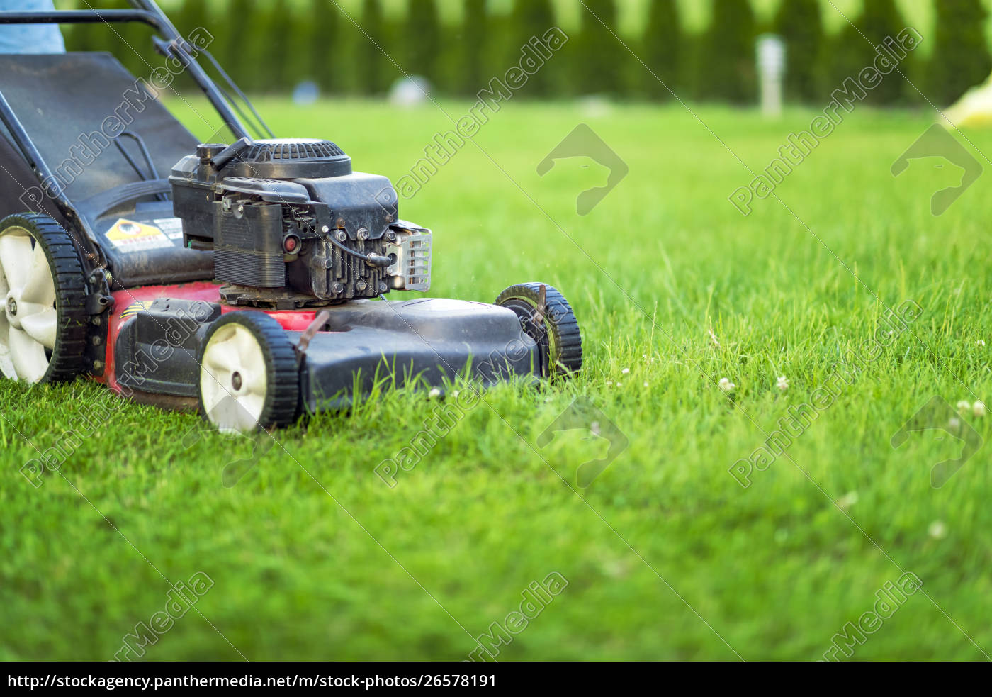 Lawn Mower Cutting Green Grass Royalty Free Image 26578191 Panthermedia Stock Agency