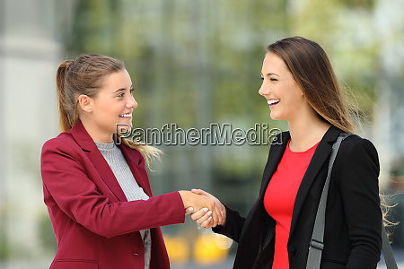 two executives meeting and handshaking on
