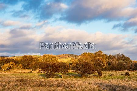 landscape on the island moen in