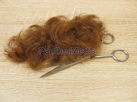 cutted auburn hair tips and a