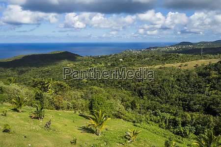 st lucia castries in the