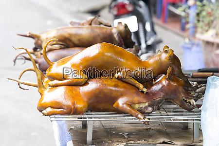 dog meat in hanoi