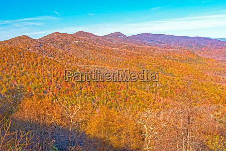 fall colors in a mountain vista