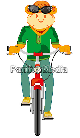 cartoon animal on transport facility bicyclevector