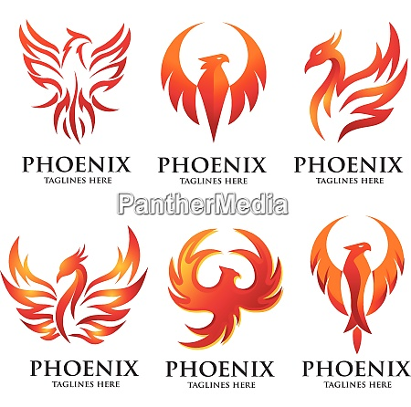 luxury phoenix logo set concept
