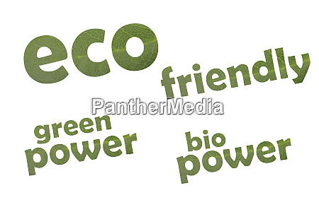 collection of the keywords eco friendly