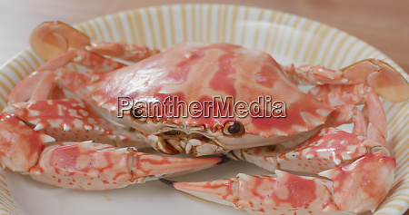 steamed chaozhou cuisine steamed crab
