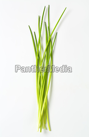 fresh chives leaves